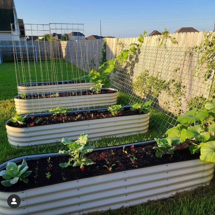 Modular Raised Garden Beds